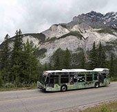 Roam Bus