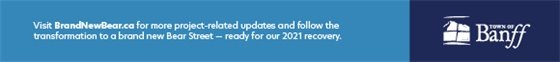 Brand New Bear Newsletter footer