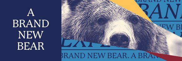 Brand New Bear