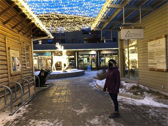 photo - Bison Courtyard