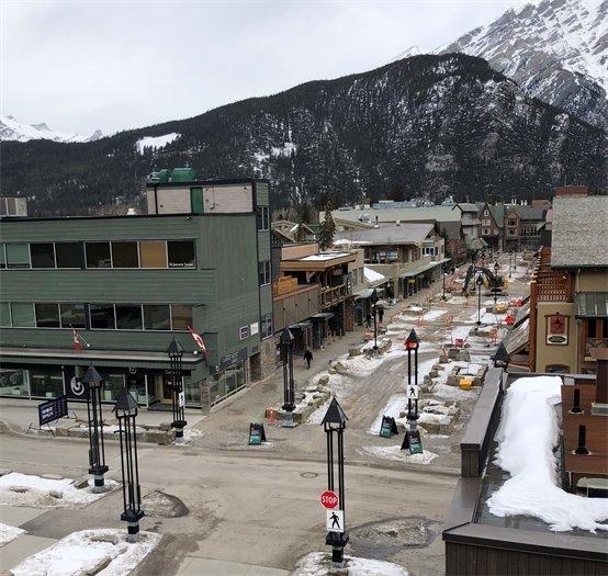 Bear street image