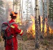 Wildfire Forum